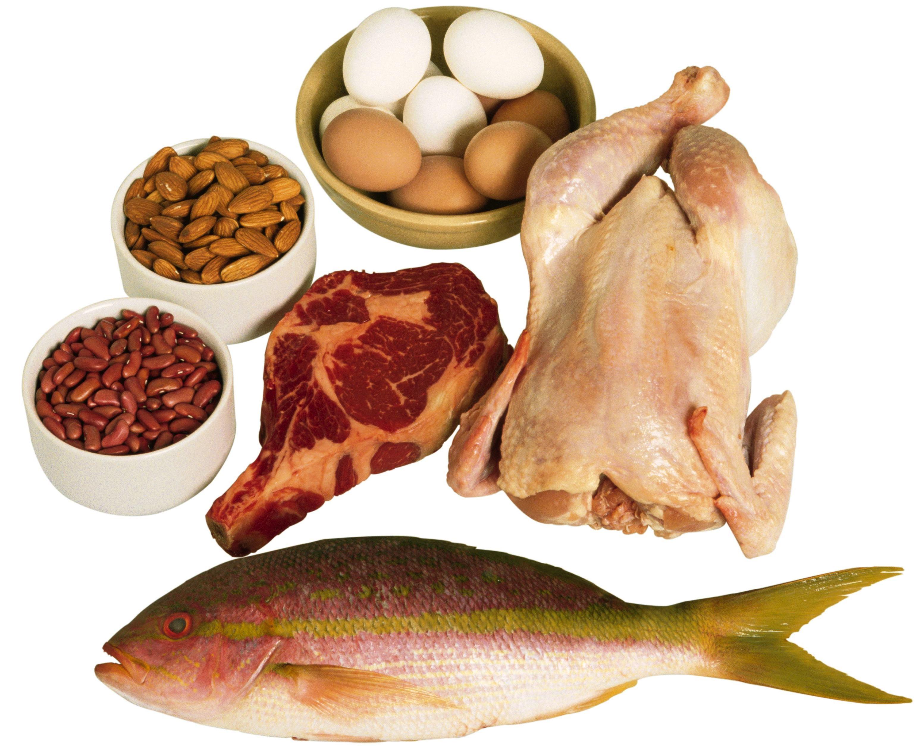 אוכל המכיל חלבונים
